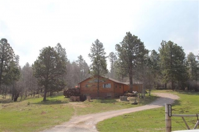 O'Neill Pass Log Sided Home on 5 Acres