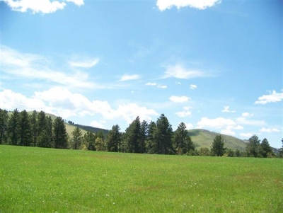 52.58 acres just outside of Deadwood