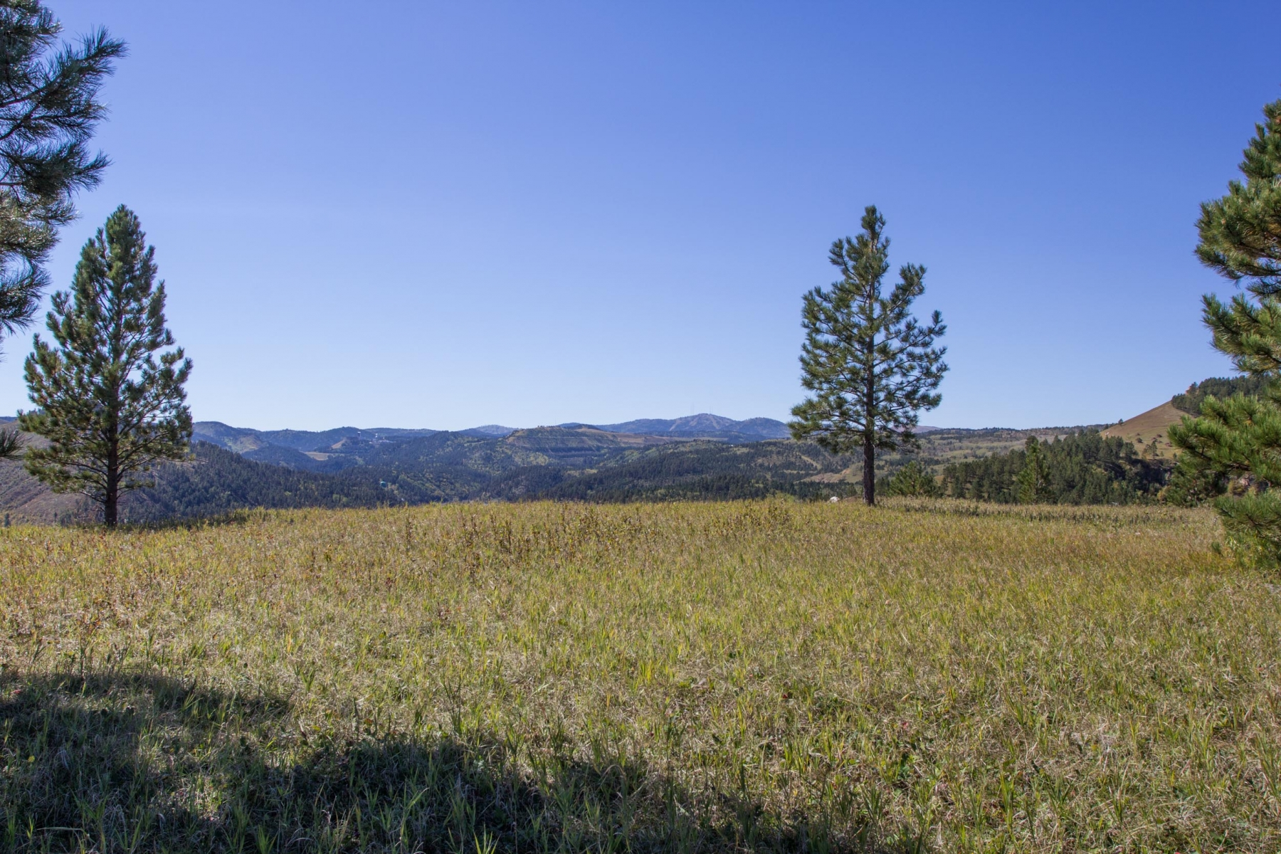 Prime Commercial Property - 87.80 Acres in Deadwood