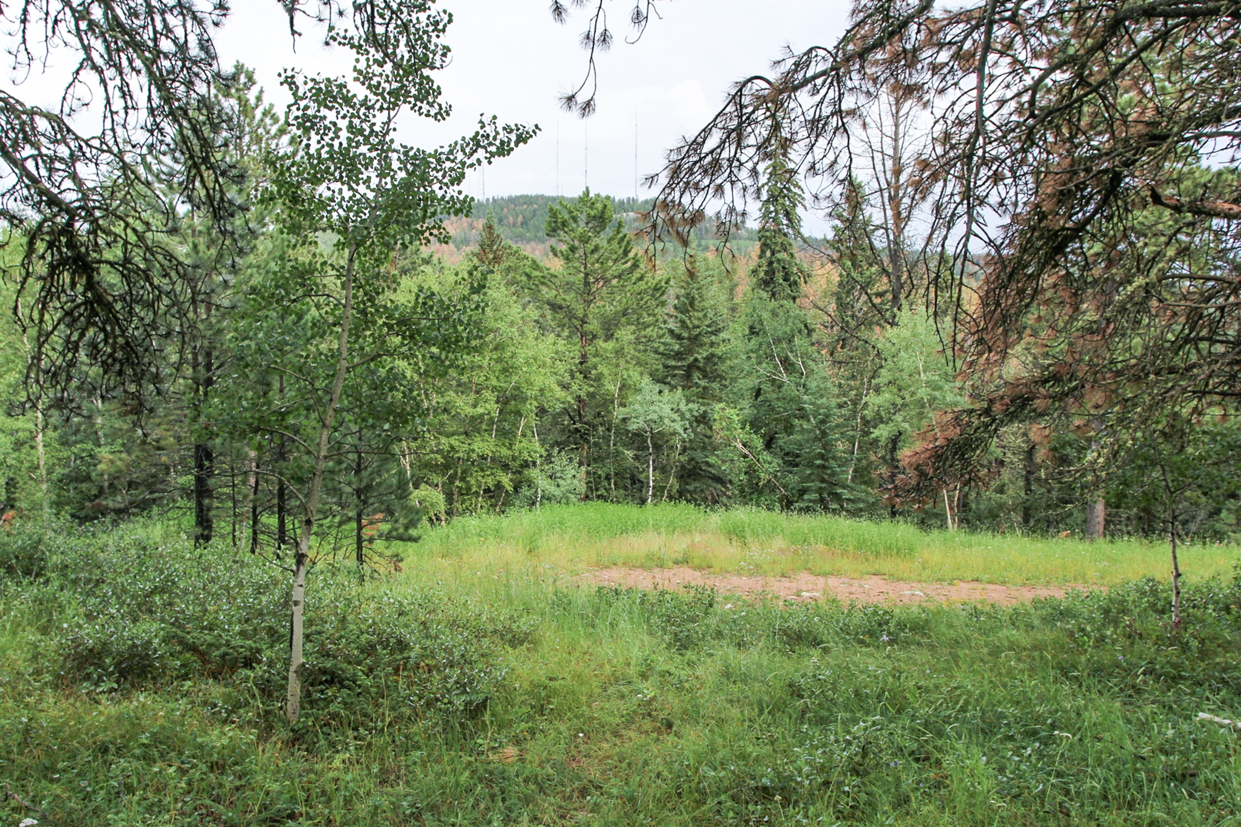 0.41 acres on Turkey Trail - Terry Peak