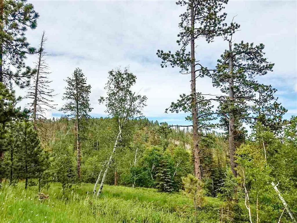 51.65 Acres - Terry Peak Summit RD
