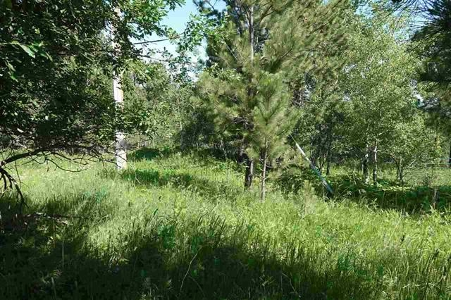 1.25 Acres near the Hearst Subdivision in Lead