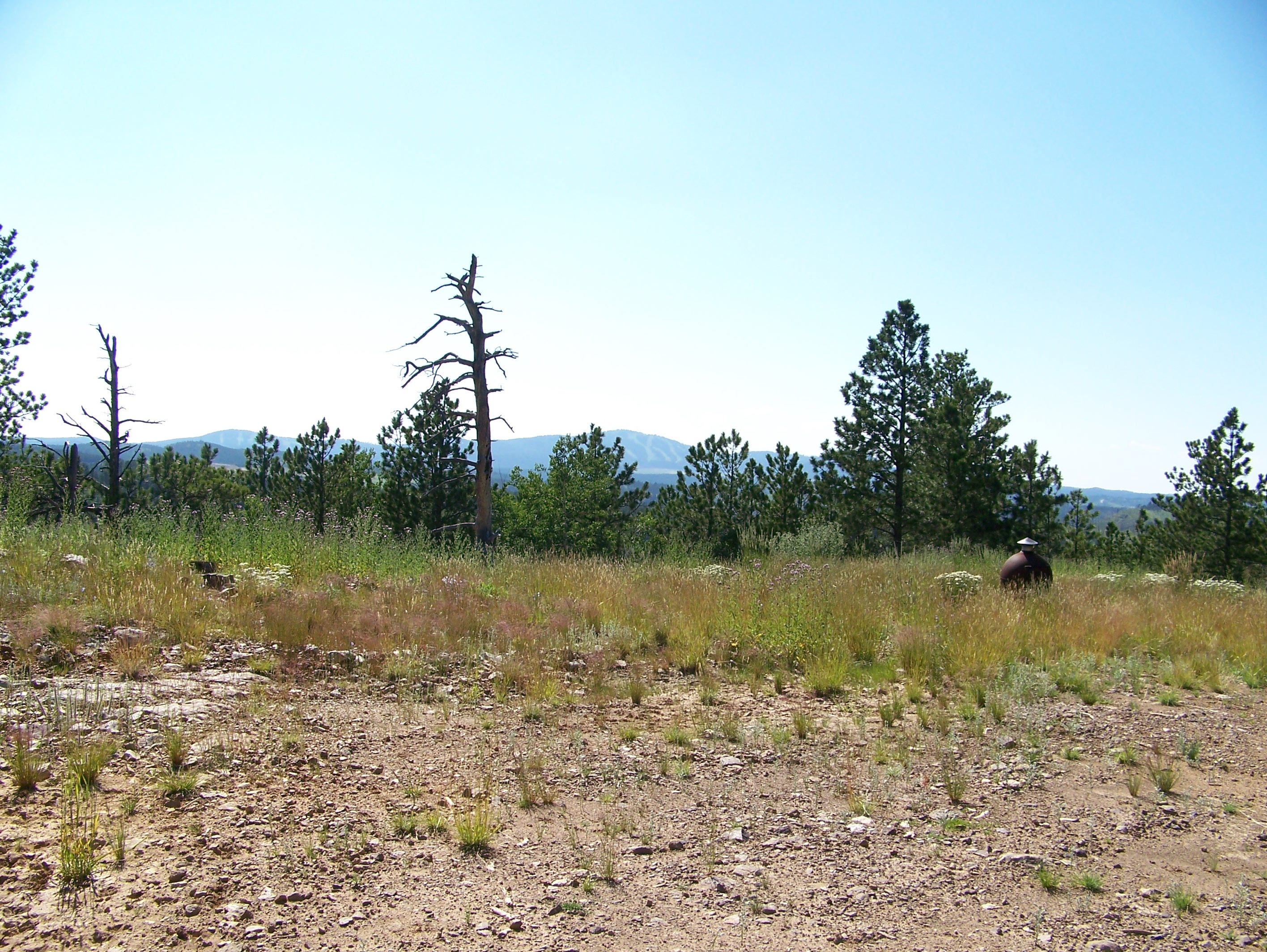 11.40 Acres Outside Deadwood