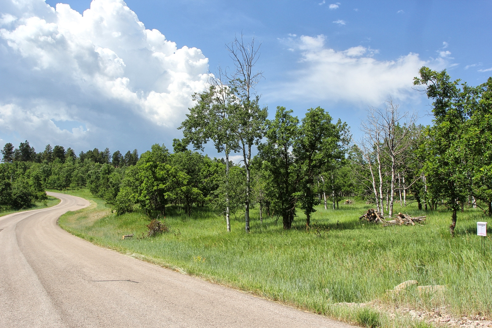 2.06 acres in Boulder Canyon