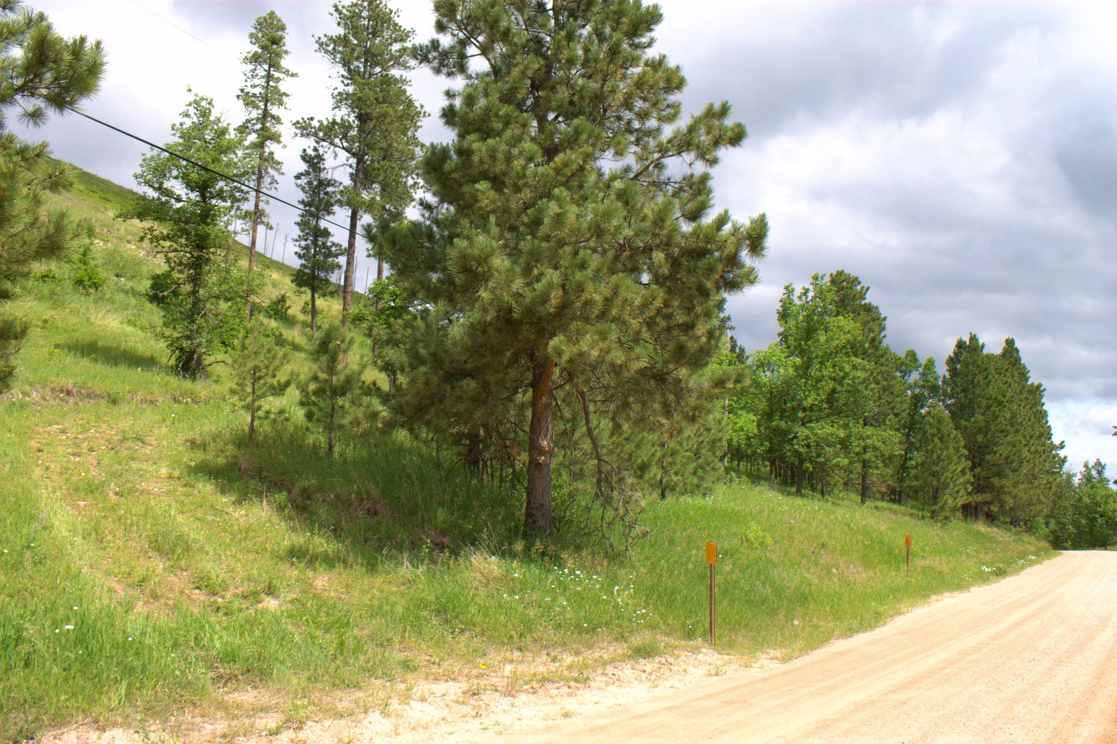 6.41 Acres in Two Bit Near Deadwood